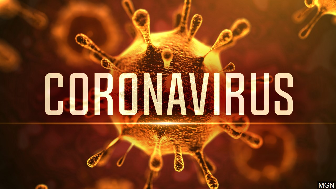 Resultado de imagem para corona virus