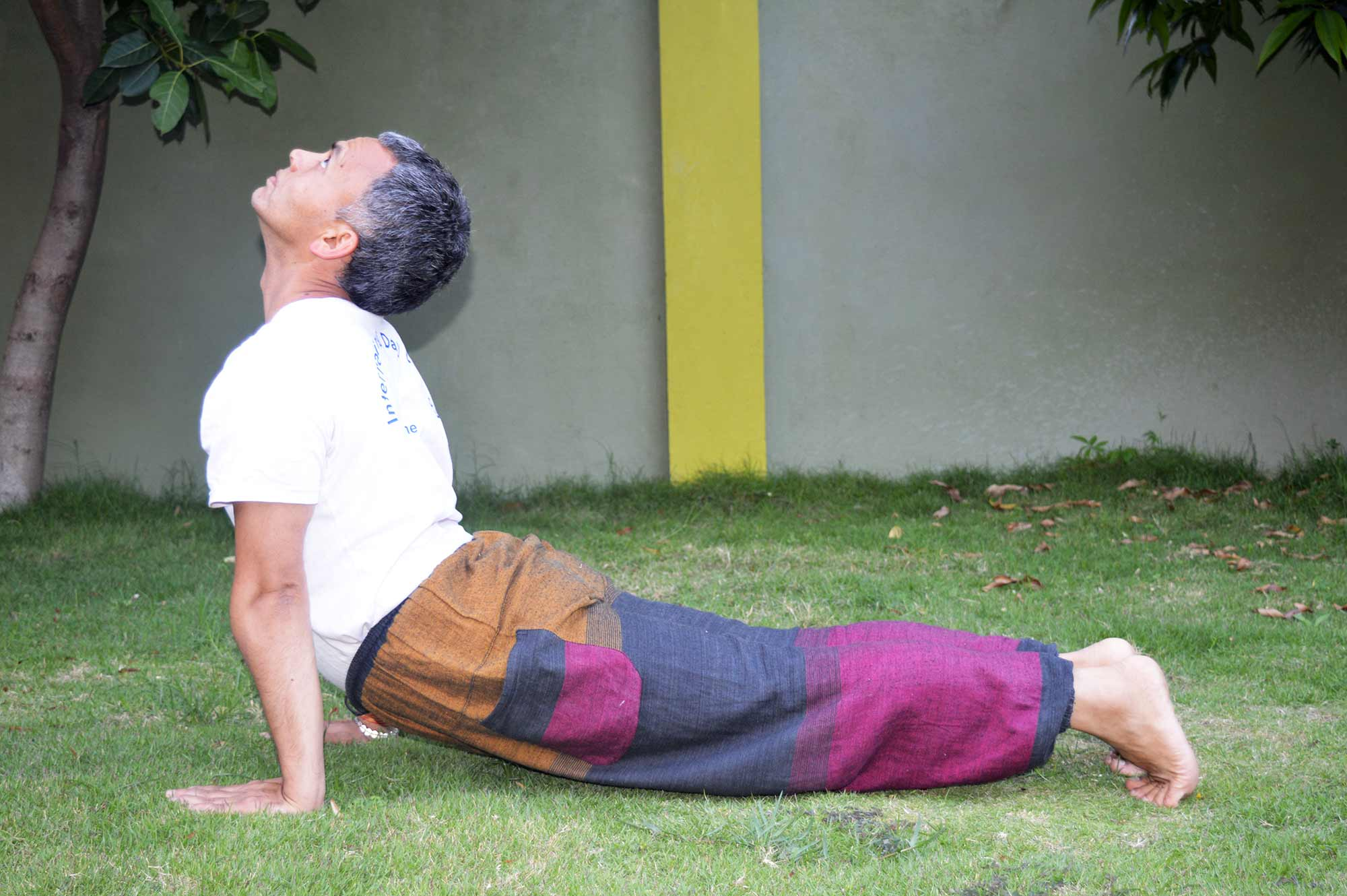 Hatha Yoga Online Teacher Training in Nepal