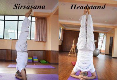 sirsasana ( Headstand )