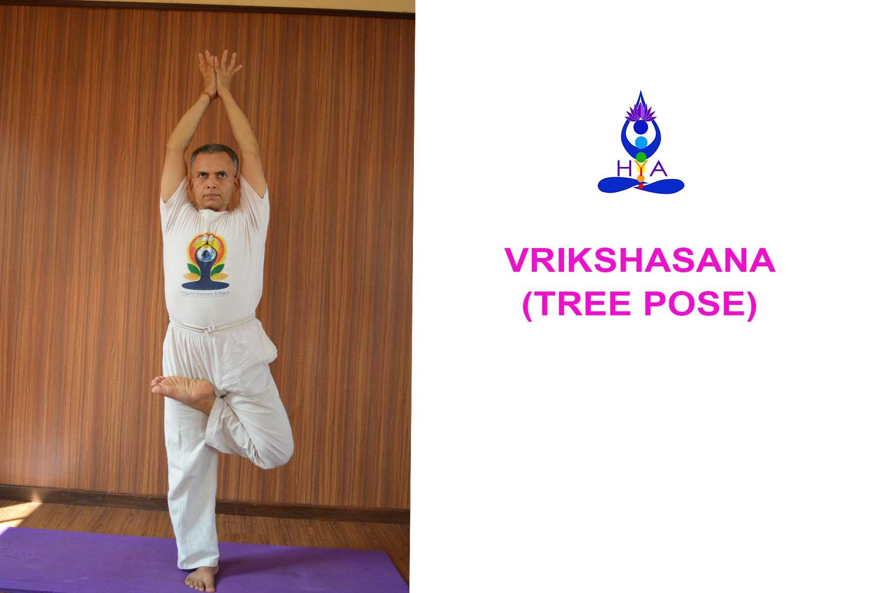 Vrikshasana & Tree pose