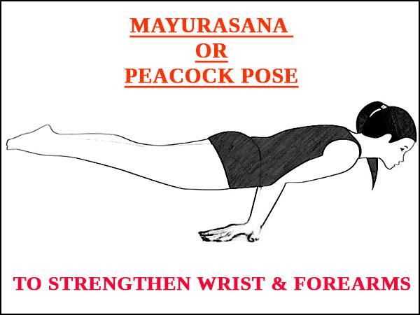 Mayurasana (Peacock pose)