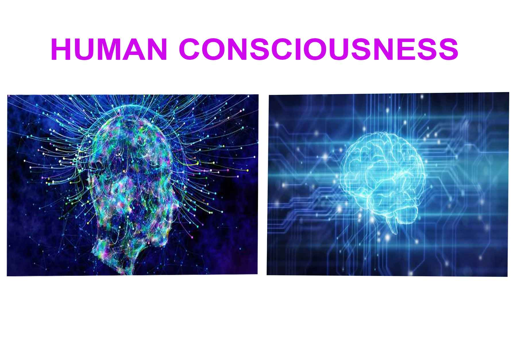 What is Human Consciousness